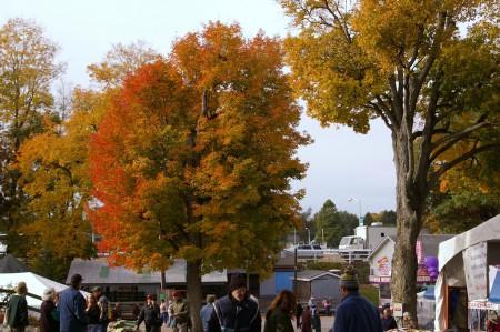 Rhinebeck Color