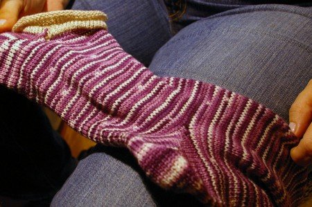 Socks !