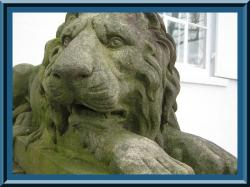 clermont_lion.jpg