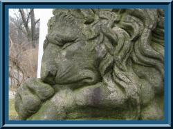 clermont_lion11.jpg